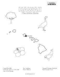 fun Hawaii coloring page for kids