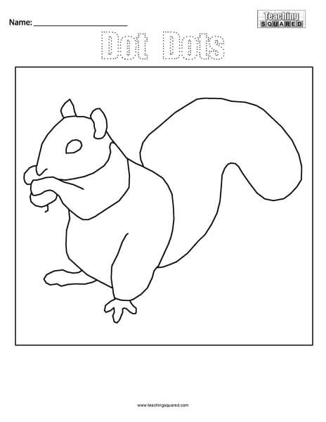 Dot Dots- Squirrel Connect the Dots